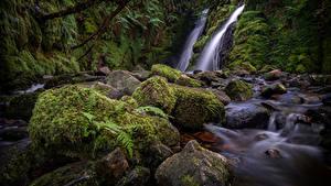 Картинка Англия Речка Камень Мох Dartmoor Природа