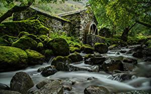 Фотография Англия Реки Камни Парки Мох Деревья Водяная мельница Lake District, Cumbria