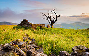 Фото Англия Развалины Камень Деревья Peak District