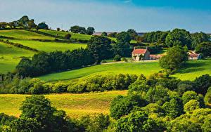 Фото Англия Пейзаж Парки Здания Деревьев North York Moors National Park Природа
