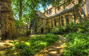 Фотография Англия Храм Лондон Трава Ствол дерева Тропа HDR Города