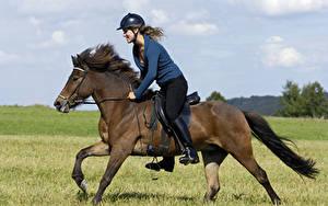 Фотографии Верховая езда Лошади Шлем спортивный Девушки