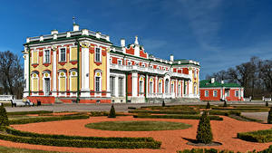 Фотографии Эстония Таллин Дома Дизайна Кусты город