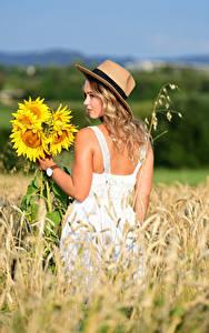 Обои Поля Букет Подсолнухи Блондинка Платья Шляпа Selina молодая женщина Природа