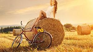 Фотографии Поля Солома Шатенки Платья Сидя Велосипеды Поза девушка