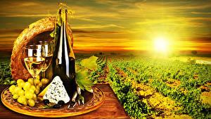 Картинки Поля Рассвет и закат Вино Виноград Сыры Виноградник Бутылка Бокал Шляпе Еда