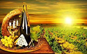 Картинки Поля Рассвет и закат Вино Виноград Сыры Бутылки Бокалы Шляпы Продукты питания