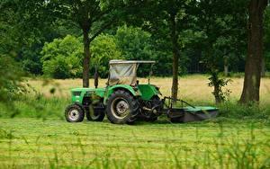 Фото Поля Трактора Зеленая