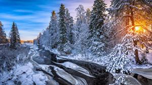 Картинка Финляндия Зима Лес Река Рассветы и закаты Льда Дерево Kuusamo Природа