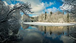 Картинка Финляндия Зимние Речка Леса Ветвь Karkkila Природа