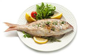 Фотографии Рыба Лимоны Белым фоном Тарелке