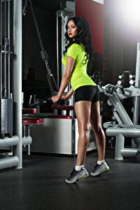 Обои Фитнес Брюнетка Физические упражнения Смотрит Красивые Девушки Спорт