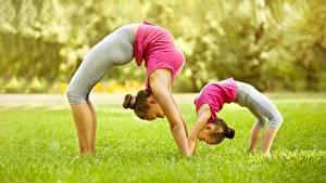 Фотографии Фитнес Гимнастика Трава 2 Девочка Растяжка упражнение Сбоку Размытый фон молодые женщины