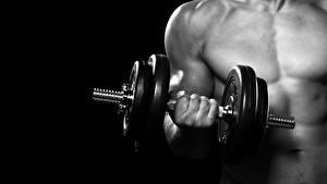 Фото Фитнес Мужчины Гантель Руки dumbbell спортивные
