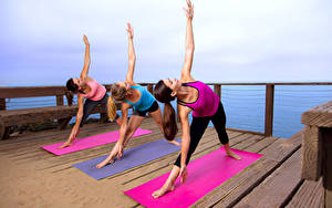 Обои Фитнес Втроем Физическое упражнение Руки Ноги Девушки Спорт