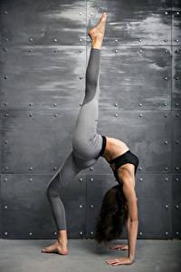 Картинка Фитнес Стенка Шатенки Тренируется Рука Ног Растяжка упражнение молодые женщины Спорт