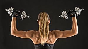 Картинки Фитнес Гантелями Волосы Спина dumbbells fitness sportswear muscular back спортивные Девушки