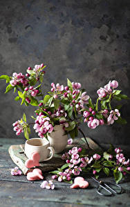 Картинка Цветущие деревья Печенье Натюрморт Доски Ветки Чашка Сердце Пища Цветы