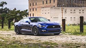 Фотографии Ford Синих Металлик Mustang Автомобили