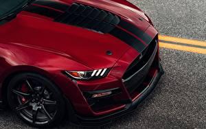 Обои для рабочего стола Форд Красные Металлик Полосатый Капот Mustang Shelby GT500 2019 машина