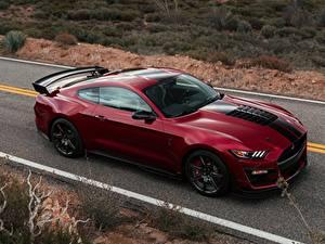 Фотографии Ford Бордовая Mustang Shelby GT500 машины