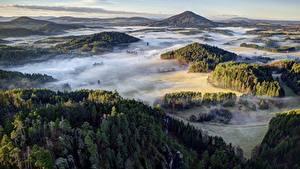 Фотографии Леса Чехия Парк Холм Тумане Сверху Bohemian Switzerland National Park Природа