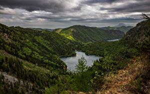 Картинки Лес Гора Озеро Австрия Langbathseen