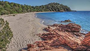 Фотография Франция Побережье Камень Песок Утес Ветвь Пляж Corsica Природа