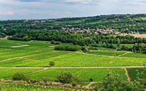 Фотографии Франция Дома Поля Село Santenay, Bourgogne