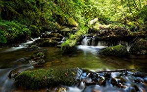 Фотографии Франция Водопады Камень Мох Ручей La Monne Природа