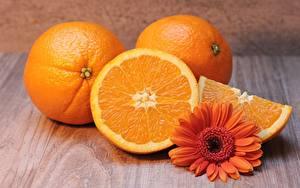 Фотография Герберы Апельсин Оранжевый Кусочки Пища