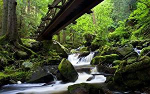 Обои Германия Мосты Водопады Леса Камни Мох Ручей Ravennaschlucht Black Forest Baden-Württemberg Природа