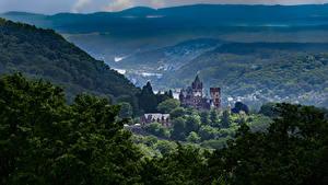 Фотографии Германия Замок Гора Деревьев Альп Drachenburg Castle