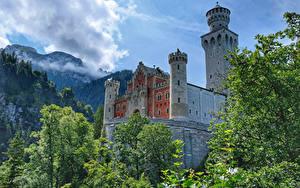 Обои для рабочего стола Германия Замки Горы Ветки Neuschwanstein Castle Города