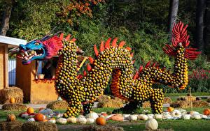 Картинки Германия Оригинальные Тыква Дракон Дизайна Ludwigsburg Pumpkin Festival Природа