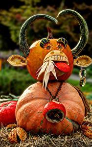Фотография Германия Оригинальные Тыква С рогами Боке Ludwigsburg Pumpkin Festival