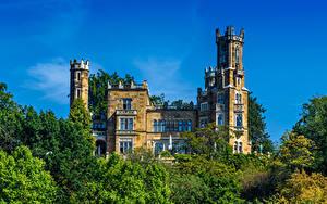 Фото Германия Дрезден Замок Дерево Eckberg Castle Города