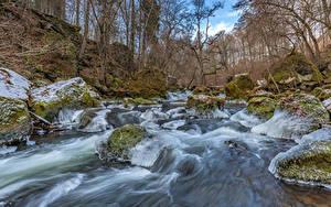 Фото Германия Лес Речка Камень Дерево Мха Льда South-Eifel Природа