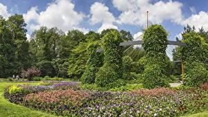 Обои Германия Сады Петунья Дизайн Кусты Botanischer Garten Augsburg Природа
