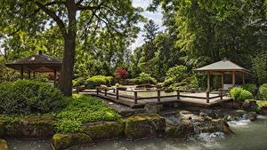Обои для рабочего стола Германия Сады Пруд Камень Дизайна Кустов Дерево Мха Augsburg Botanical Garden Природа