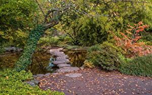 Фото Германия Парки Осень Камень Пруд Кусты Деревья Karlsruhe Природа