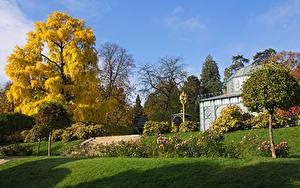 Фотографии Германия Парк Осенние Дерево Кустов Траве Wilhelma zoological-botanical garden Stuttgart