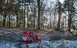 Фотография Германия Парки Олени Зимние Куклы Девочки Деревьев Grugapark Esse Природа