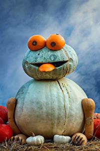 Картинка Германия Тыква Оригинальные Дизайна Ludwigsburg Pumpkin Festival