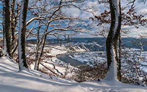Фотографии Германия Зимние Реки Деревья Снег Rheinland-Pfalz, river Moselle Природа