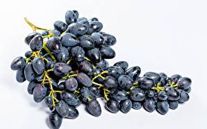 Обои Виноград Крупным планом Белом фоне Синий Еда