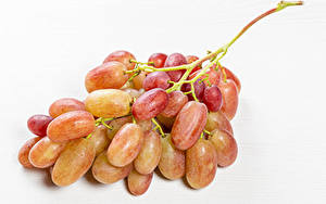 Картинки Виноград Крупным планом Белый фон На ветке Продукты питания