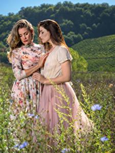 Картинка Трава Двое Платья молодая женщина
