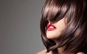 Фотография Серый фон Причёска Красные губы Шатенки Волос молодая женщина