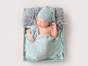 Фотографии Серый фон Грудной ребёнок Спящий Шапки Ребёнок